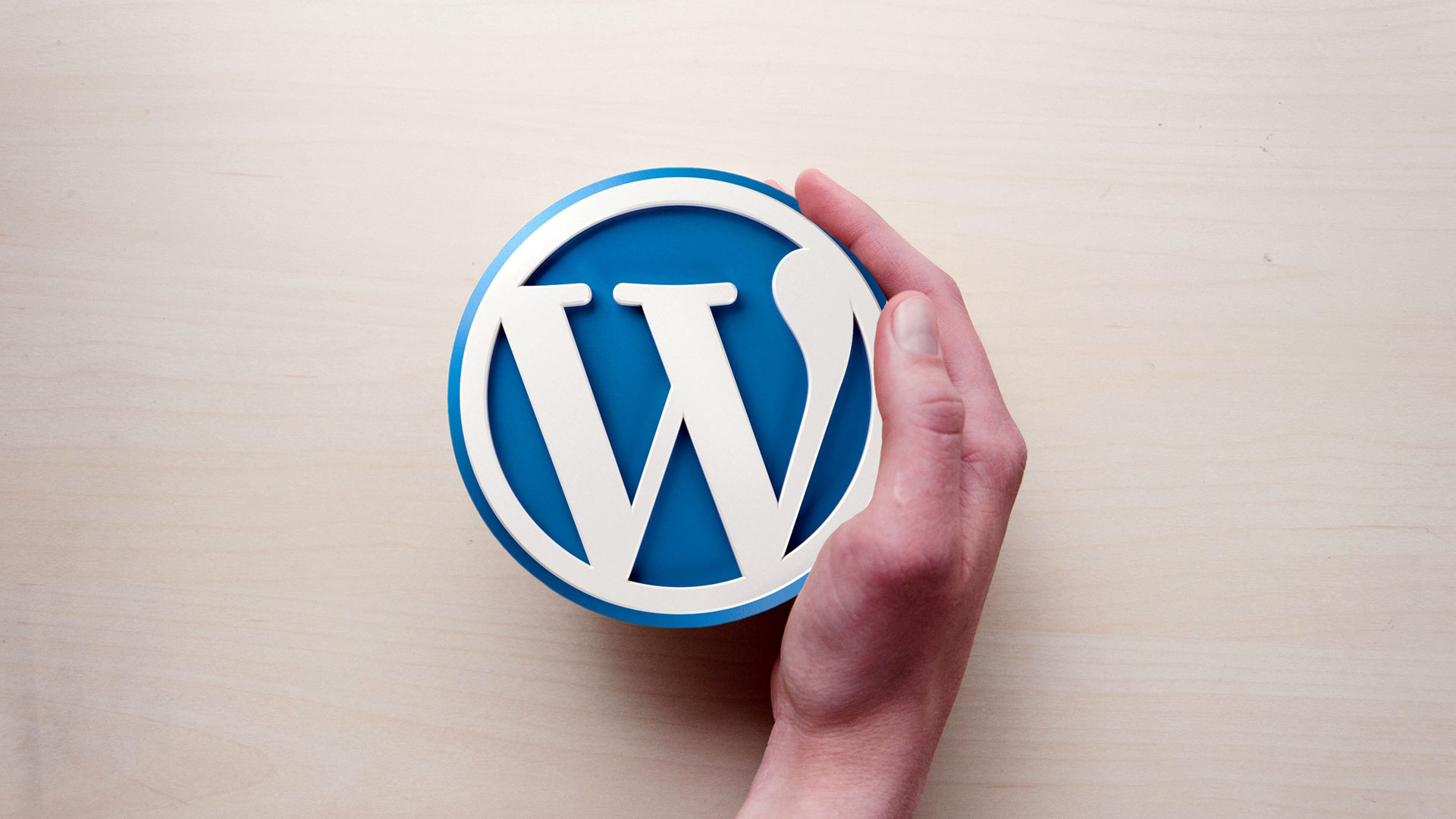 WordPress Developer