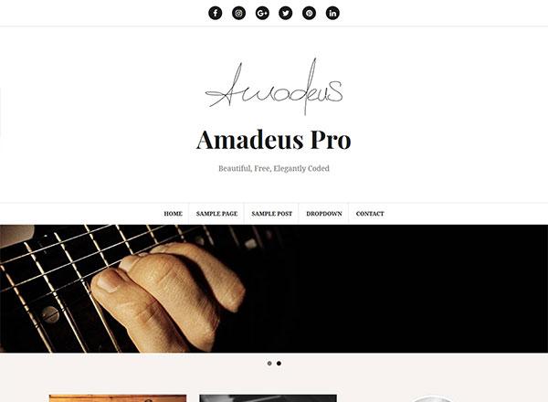 Amadeus Pro